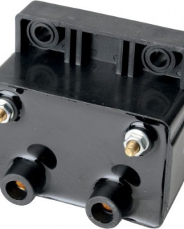 BLACK DUAL-FIRE IGNITION COIL